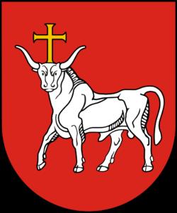 saugos tarnyba Komanda Kaune